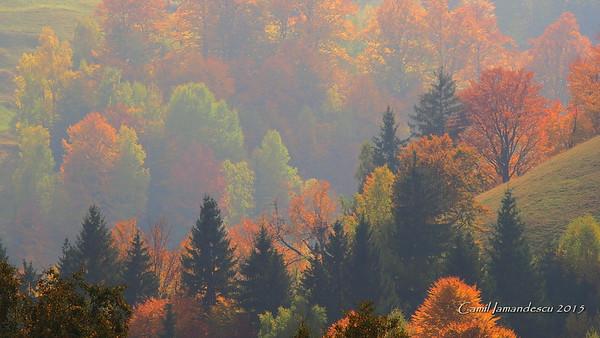 Toamna frumoasa - Beautiful Autumn Time