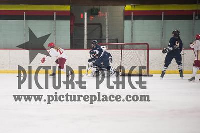 MHS Girls Hockey Action MHS Vs. Sibley