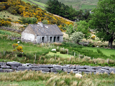 Connemara Countryside