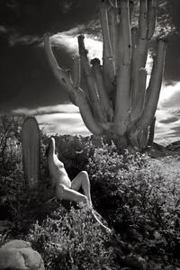 Saguaro Nude