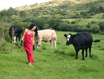 """Self-Portrait among the Cattle, Ireland"""