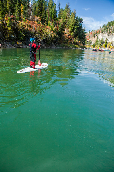 A man paddle boards  on the Snake River near Jackson Hole, Wyoming