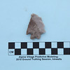 28. A 5,000 year old Pinto Basin style projectile point found in the high Wind River Range.