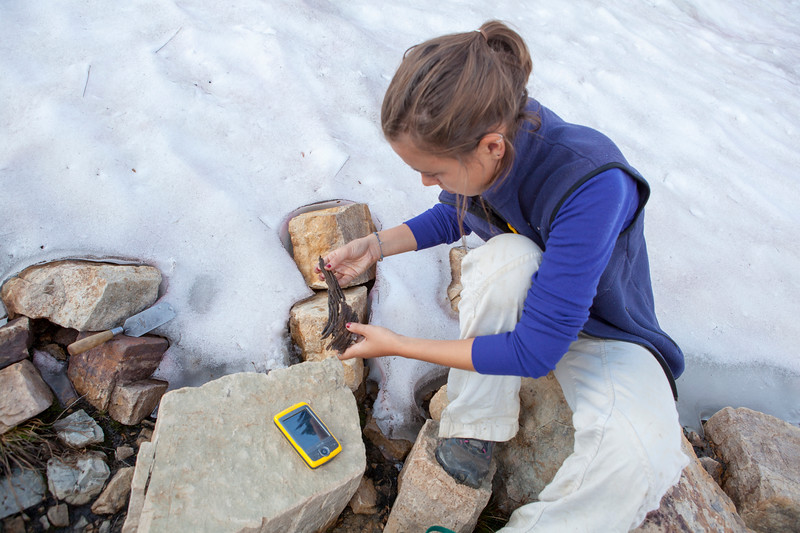 Archaeologist Rebecca Sgouros examines an ancient piece of wood that melted out of an ice patch at 3,000 meters