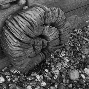 Weathered wooden wheel, Cuckmere Haven, East Sussex
