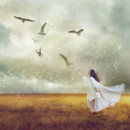 The Protection Of Dreams - Olivia Clemens
