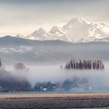 Morning fog in Skagit Valley, Washington