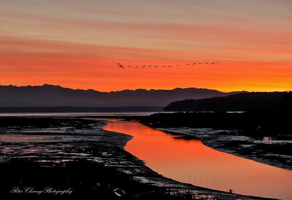 Sunset at Fir Island, Washington