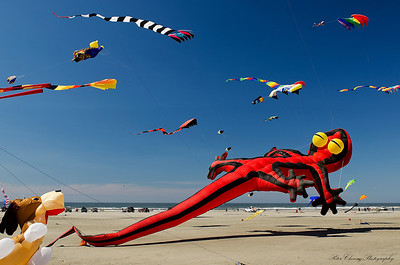 Long Beach Kite Festival
