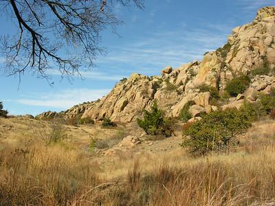 Valley Below Elk Mountain