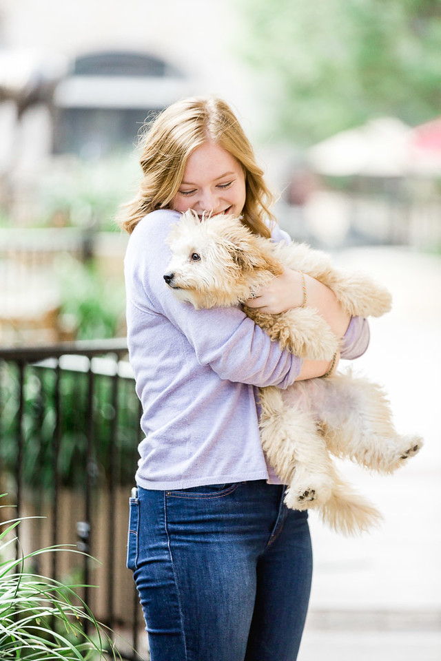 Sam Adorable dog Senior Photography