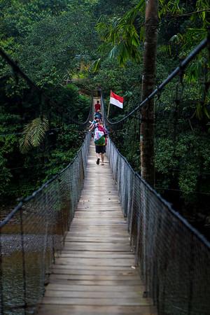 Tangkahan, Sumatra. 2017