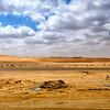 Western Desert, Egypt. 2010