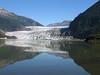 Mendenhall Glacier - #3