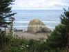 Oregon Coast - #3