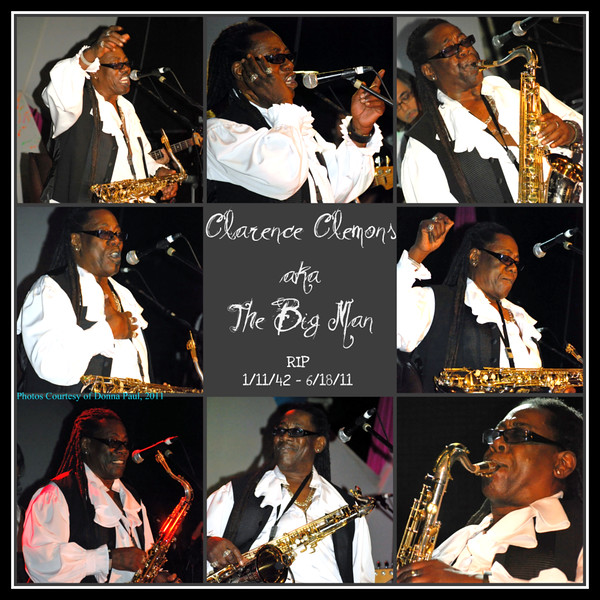 Clarence Clemons Collage