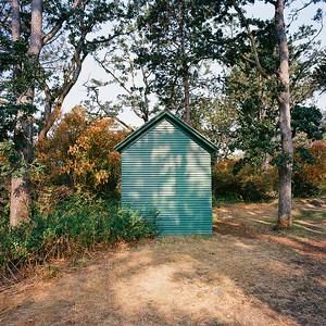Green House, Beacon Hill Park, Victoria BC. 2017.