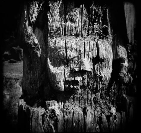 Mortuary Pole Detaill, SGang Gwaay, Haida Gwaii, BC. 2017