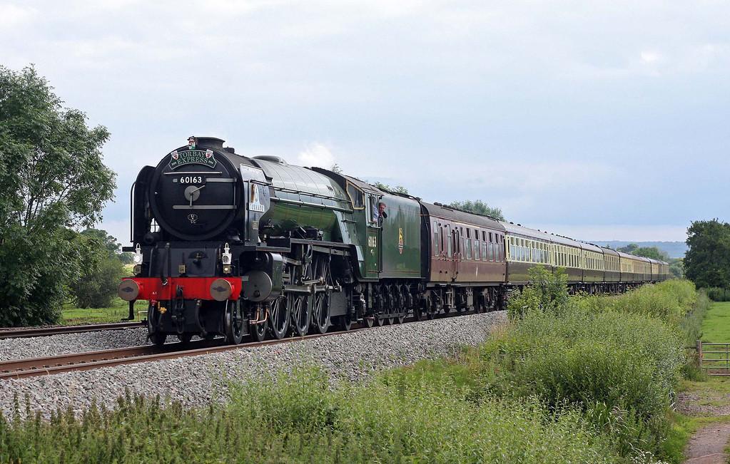 60163, 16.45 Kingswear-Bristol Temple Meads, Torbay Express, Pugham Crossing, near Burlescombe, 10-7-11.