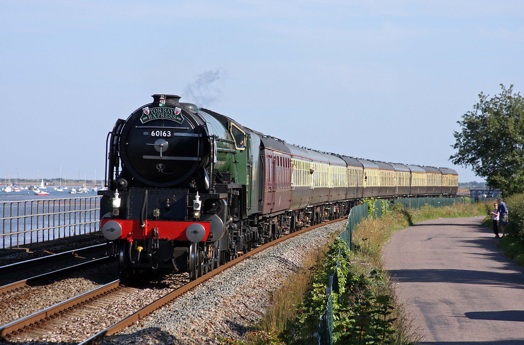 60163, 16.45 Kingswear-Bristol Temple Meads, Torbay Express, Powderham, near Starcross, 3-7-11.