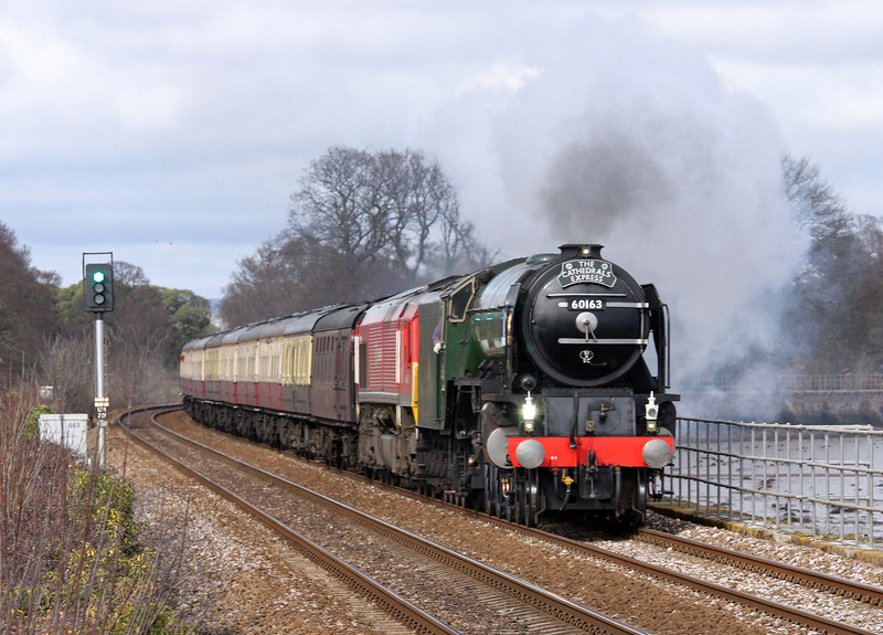 60163/66152, 08.06 London Paddington-Plymouth, The Cathedrals Express, Powderham, near Starcross, 10-3-12.