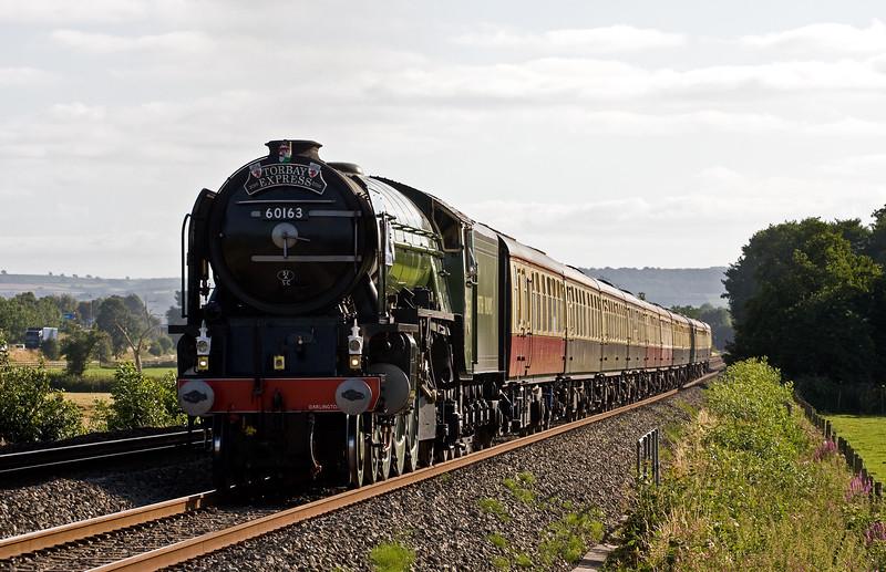 60163, 16.50 Kingswear-Bristol Temple Meads, Torbay Express, Pugham Crossing, near Burlescombe, 7-8-16.