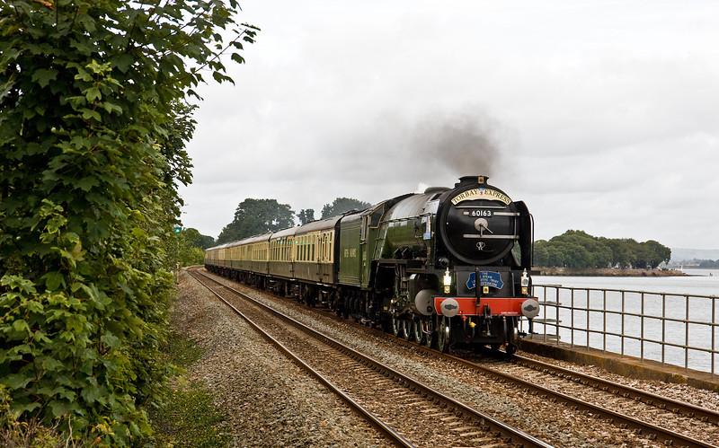 60163, 09.15 Bristol Temple Meads-Kingswear, Torbay Express, Powderham, near Exeter, 4-9-16.
