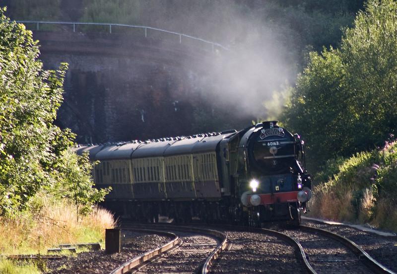 60163, 16.50 Kingswear-Bristol Temple Meads, Torbay Express, Marlands, near Wellington, 23-7-17.