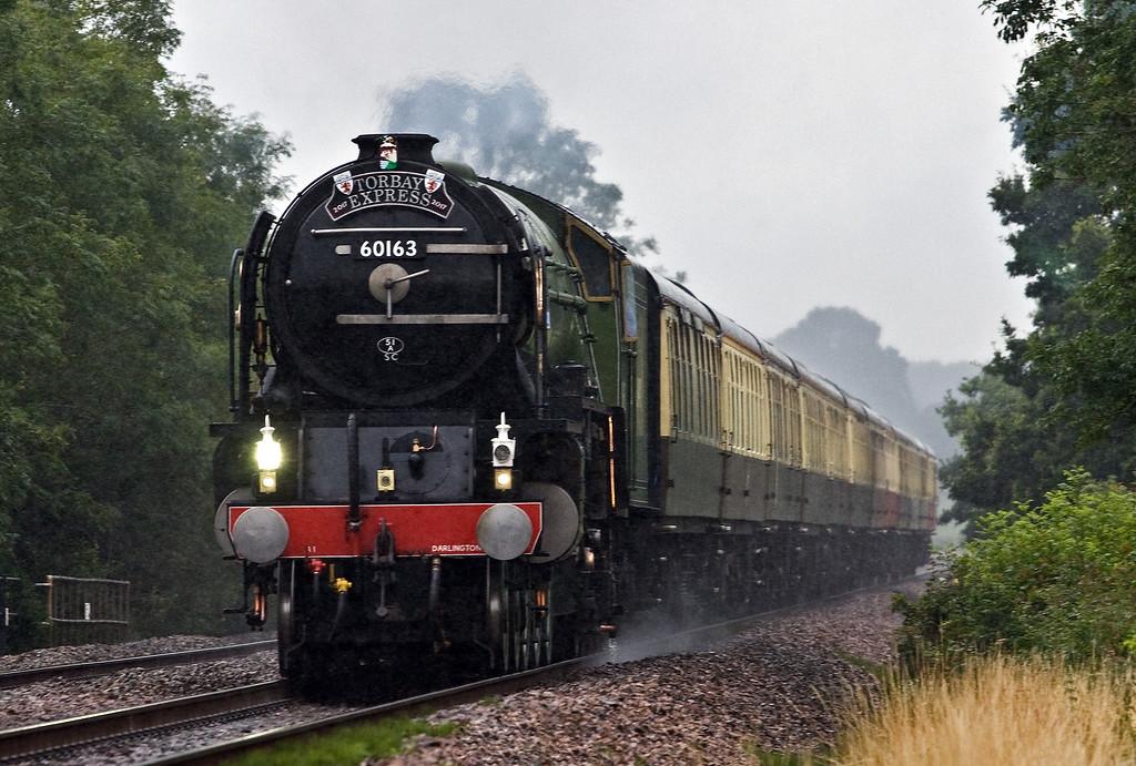 60163, 09.10 Bristol Temple Meads-Kingswear, Torbay Express, Pugham Crossing, near Burlescombe, 23-7-17.