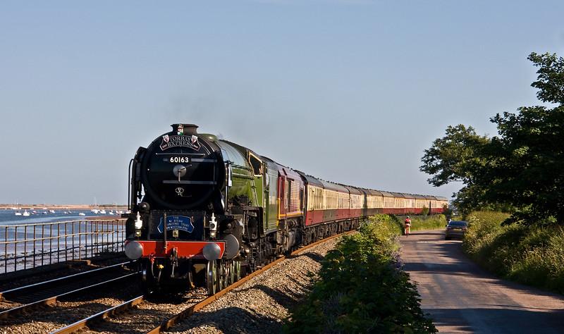 60163/66102, 16.50 Kingswear- Bristol Temple Meads, Torbay Express, Powderham, near Exeter, 18-6-17.