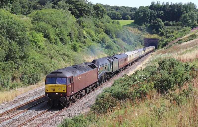 47802/60009, 08.00 Bristol Temple Meads-Kingswear, Torbay Express, via Bath and Westbury, Whiteball, 28-7-19.