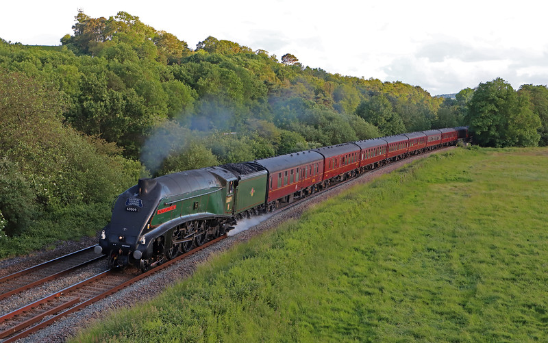 60009, 17.30  Kingswear-Guildford, via Westbury and Reading, The Dartmouth Express, Cullompton, 8-6-19.