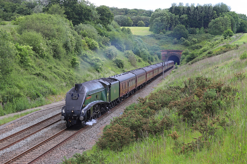 60009, 06.59 Guildford-Kingswear, via Westbury and Bristol Temple Meads, The Dartmouth Express, Whiteball, 8-6-19.