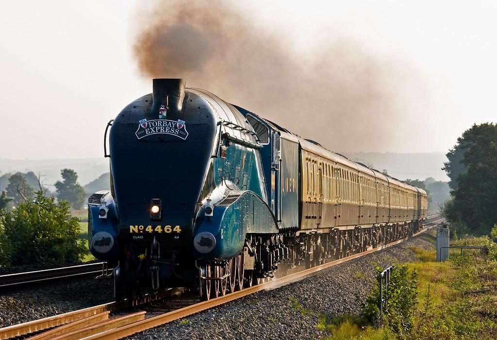 4464, 16.50 Kingswear-Bristol Temple Meads, Torbay Express, Pugham Crossing, near Burlescombe, 7-9-14.