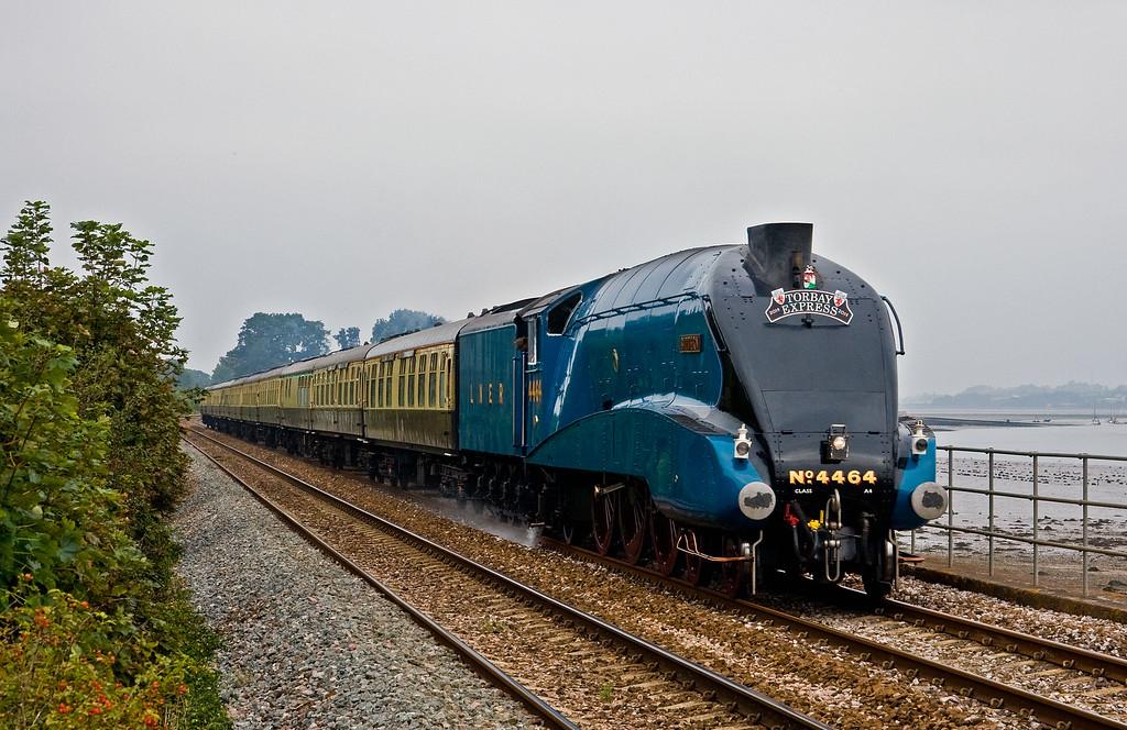 4464, 09.15 Bristol Temple Meads-Kingswear, Torbay Express, Powderham, near Starcross, 7-9-14.