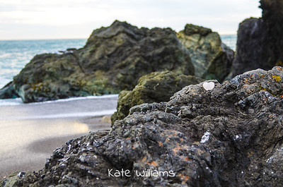 Quartz on the Sonoma Coast, California