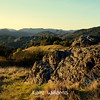 Gilliam Trail Overlook