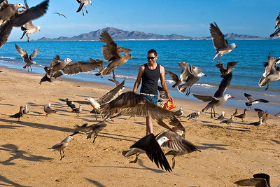 Bird Man   Kino Nuevo, Mexico