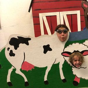 Cool Cow   Ridgefield WA