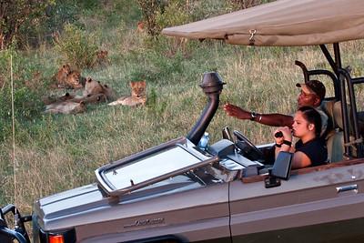 Relaxing | Serengeti National Park; Tanzania