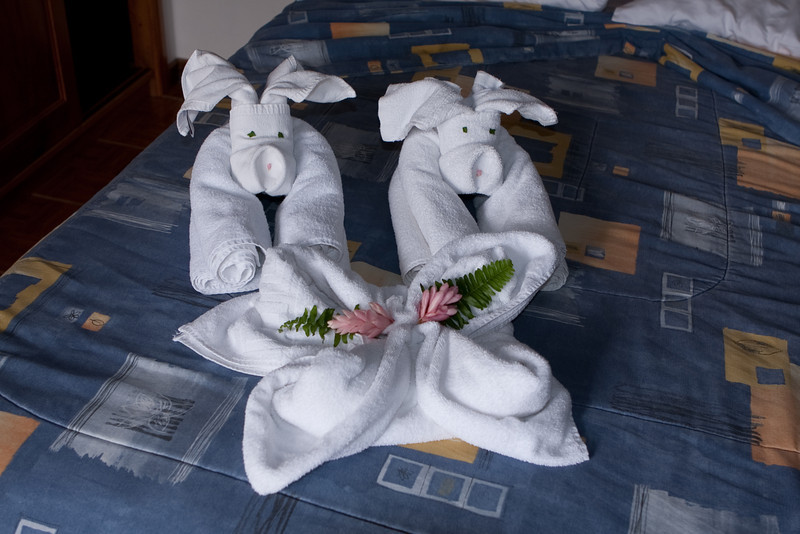 Towel arrangements (oink, oink) everyday in the room