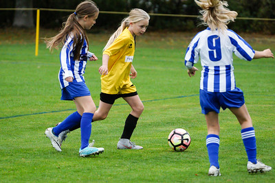 Crawley Wasps U12 (1) vs Horsham Sparrows U12 (1) on October 14, 2018 at Ewhurst Plying Field, Crawley, Crawley. Photo: Ben Davidson, www.bendavidsonphotography.com (181014-360)