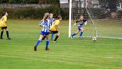 Crawley Wasps U12 (1) vs Horsham Sparrows U12 (1) on October 14, 2018 at Ewhurst Plying Field, Crawley, Crawley. Photo: Ben Davidson, www.bendavidsonphotography.com (181014-348)