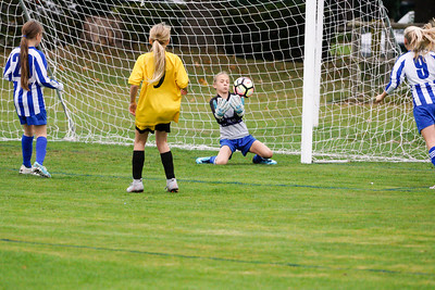 Crawley Wasps U12 (1) vs Horsham Sparrows U12 (1) on October 14, 2018 at Ewhurst Plying Field, Crawley, Crawley. Photo: Ben Davidson, www.bendavidsonphotography.com (181014-343)
