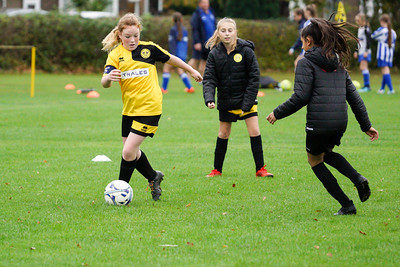 Crawley Wasps U12 (1) vs Horsham Sparrows U12 (1) on October 14, 2018 at Ewhurst Plying Field, Crawley, Crawley. Photo: Ben Davidson, www.bendavidsonphotography.com (181014-319)