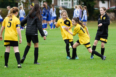 Crawley Wasps U12 (1) vs Horsham Sparrows U12 (1) on October 14, 2018 at Ewhurst Plying Field, Crawley, Crawley. Photo: Ben Davidson, www.bendavidsonphotography.com (181014-317)