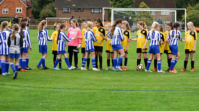 Crawley Wasps U12 (1) vs Horsham Sparrows U12 (1) on October 14, 2018 at Ewhurst Plying Field, Crawley, Crawley. Photo: Ben Davidson, www.bendavidsonphotography.com (181014-335)
