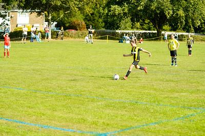 Crawley Wasps vs Brighton