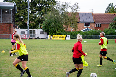 Crawley Wasps 0 - 1 vs MK Dons