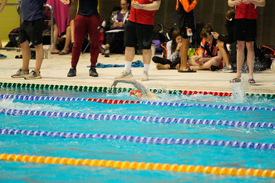 2003142386 -  Session 3 Swim London Spring Open Meet 2020 on March 14, 2020 at Aquatics Centre, Queen Elizabeth Olympic Park, E20 2ZQ, London. Photo: Ben Davidson, www.bendavidsonphotography.com